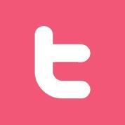 twitter-icoon